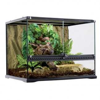 Terrariums and Accessories