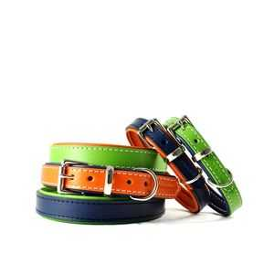 Collars, Harnesses and Leads