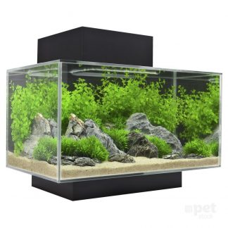 Aquariums and Accessories