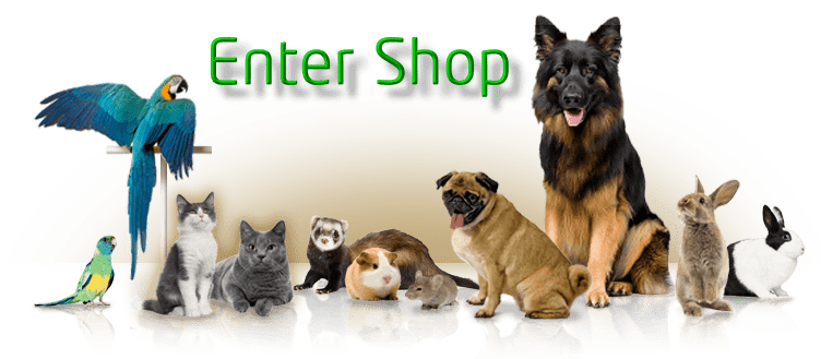 Image result for Animal Shop